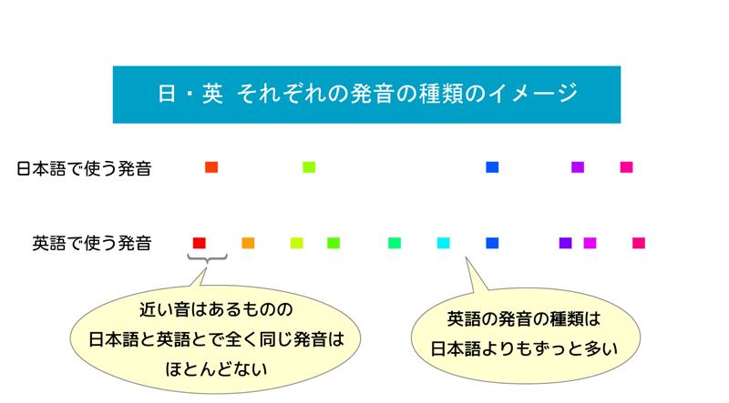 日英の発音の種類のイメージ図